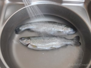 Wash the fish inside and out in running cold water.
