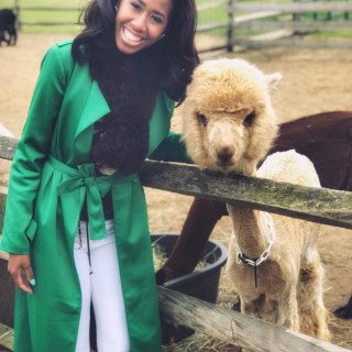 Eclectic Chic's Visit To The Martha's Vineyard Island Alpaca Farm