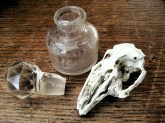 bottle, stopper and bird skull