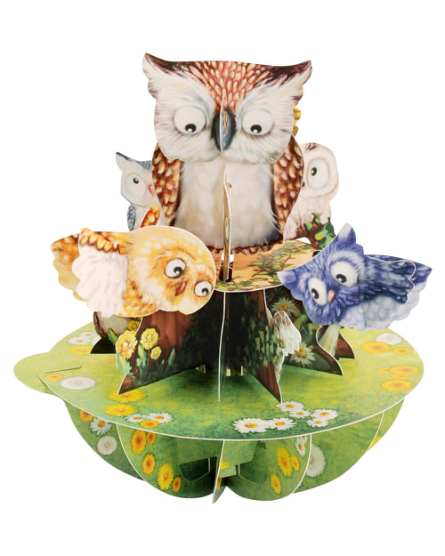 Santoro London - Owls - 3D Pop-up Pirouette Card