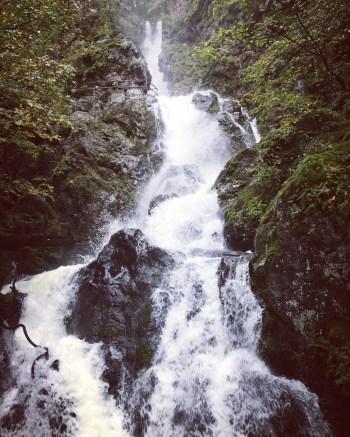 rodney-falls-1