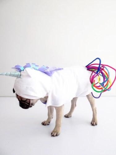unicorn-dog-costume
