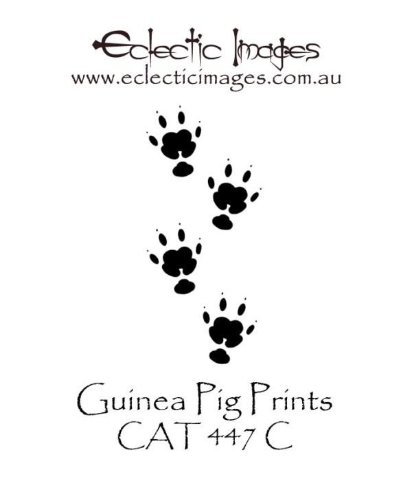 Guinea Pig Prints