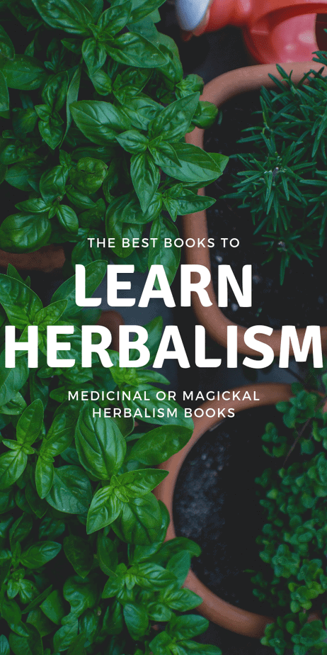 Learn how to become an herbalist whether you're in Canada, the United States, the United Kingdom, or elsewhere around the world. Tap into the deep wealth of history from wise women that have come before you. #herbalism #herbalist #books #reading #book #toread #witchcraft #witch #pagan #wicca #occult #wiccan #paganism