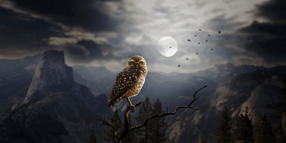 An owl sitting on a branch against a moonlit mountain range as the background