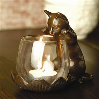 Cat looking into a glass candle holder