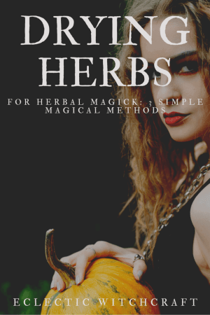 Decorative Image  |  Learn Herbalism: The 10 Best Herbalist Books  | If you're anything like me, you are dying to learn herbalism. Not only is herbalism an incredible way to deepen your witchcraft and magick expertise, but it can help you to care for and heal your family, your community, and yourself.