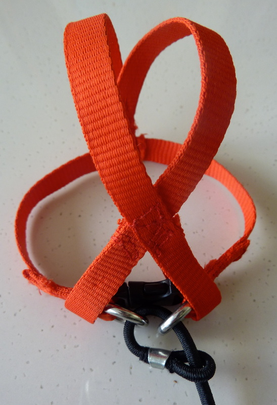 Our Harness