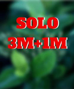 SOLO 3M+1M