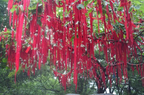 Chiny_20090713-112520