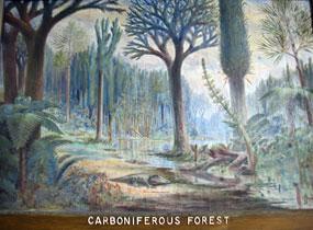 planten en bossen tijdens het carboon