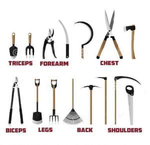fitness in de tuin