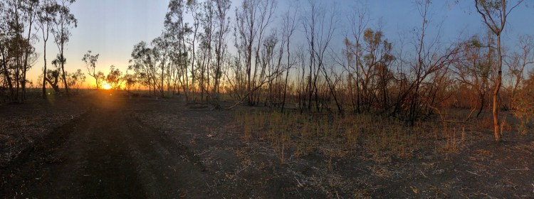 """Sunrise at """"Burrima"""" over the Macquarie Marshes northern Nature Reserve"""