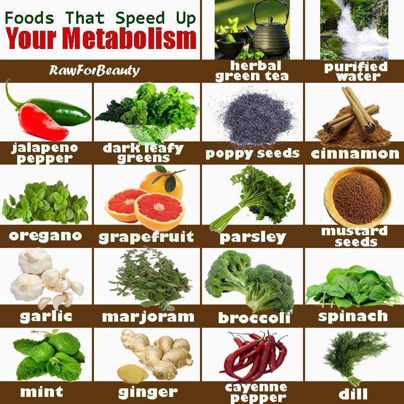 Image result for Metabolism Boosters