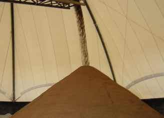 Treated Sand with Sugar Beet