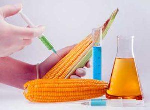 Štetni aditivi u prehrambenim proizvodima – E brojevi