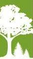National Arbor Day Foundation Designates UMass-Amherst a TreeCampus USA