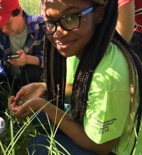 Doris Duke Conservation Scholars Program (DDCSP) University of Massachusetts Amherst (UMASS)