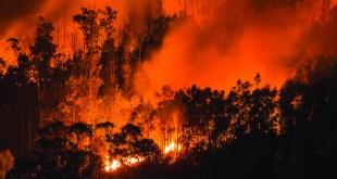 ncêndio Monchique