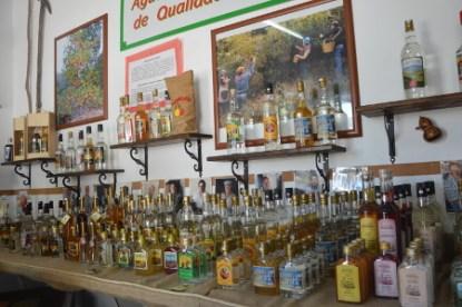 Mel and Medronho shop in Monchique