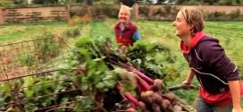 Voices-of-Transition_Leigh Court Farm-Bristol_Milpa Films