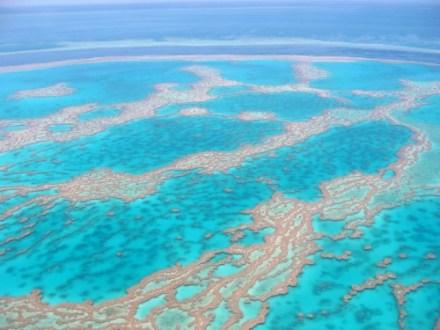 Gran-barrera-de-coral5