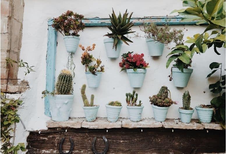 A wall that's been 'rebuilt' into a vertical garden