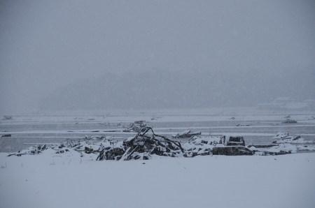 Tsunami landscape 2 years on, Photo and permission Su Grierson, 2013
