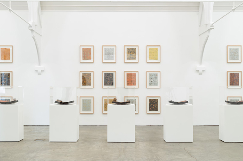 Installation view, John Newling Dear Nature at Ikon Gallery, Birmingham UK, 2020 © Ikon Gallery (3) (Large)