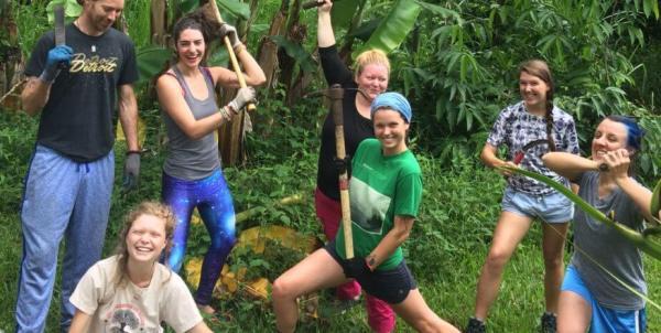 hedonisia jungle camp