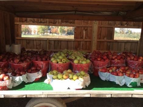 apple cart