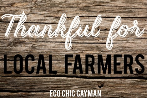 thankful for local farmers