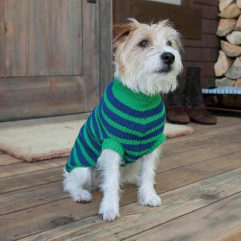 green_and_cobalt_kelly_sweater_1