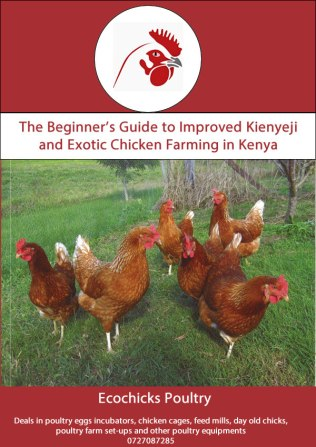 kienyeji chicken farming manual