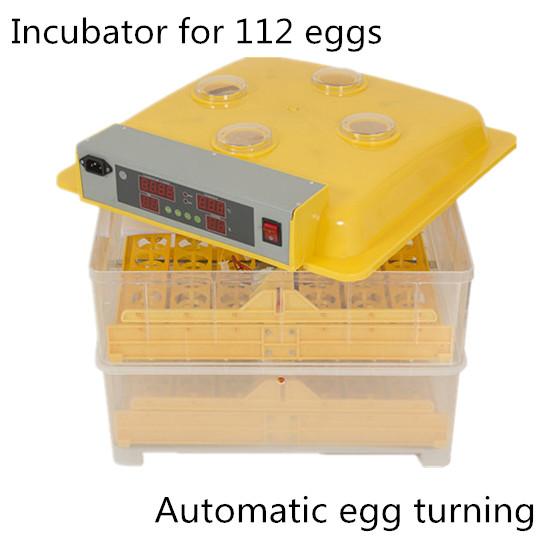 best automatic egg incubator