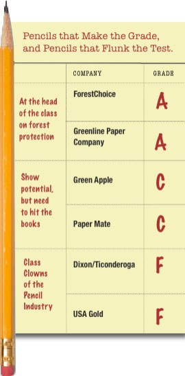 eco-friendly pencil report card