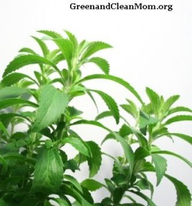 Stevia is not classified as food by the FDA