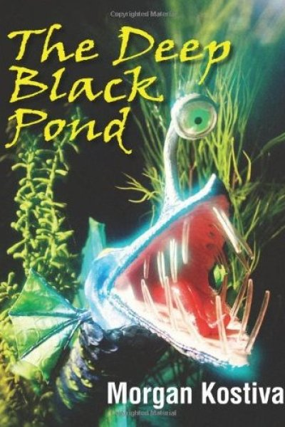 Gifts for the Reader:  The Deep Black Pond