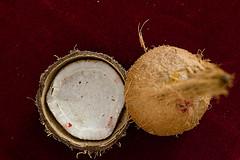 Vegan Recipes:  Coconut Almond Muffins!