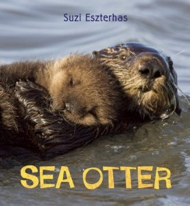 Environmental Children's Non-Fiction:  Sea Otter
