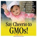 Despite its refusal to do so at home, General Mills already offers GMO-free Cheerios in Europe