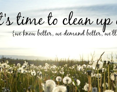 5 reasons you MUST clean green