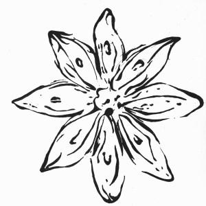 thewanderingherbivore logo