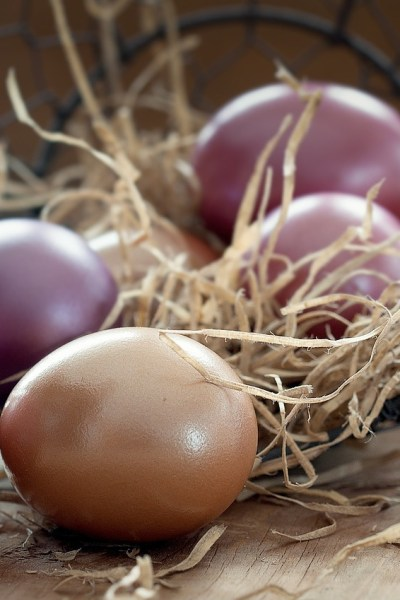 All Natural Egg Dyes:  Have an Eco-Friendly Easter!