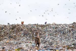 lixão-a-céu-aberto-gestão-de-resíduos
