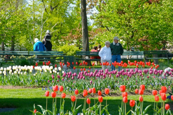 A Spring day at the Halifax Public Gardens in downtown Halifax. Photo by Wally Hayes.