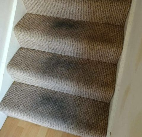carpet cleaning experts in dublin residential commercial
