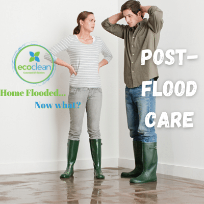 Post-Flood Care: How to Dry Wet Carpet