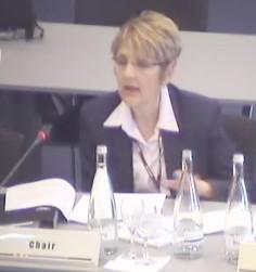 Голова засідання Комітету з нагляду за дотриманням вимог Кіотського протоколу озвучила остаточне рішення щодо невідповідності України вимогам Кіотського протоколу