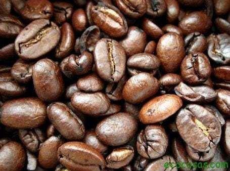 387809 10150384648847779 1455777885 n 20 formas de reutilizar el café